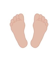 A foot vector