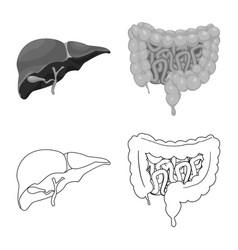 Body and human logo vector