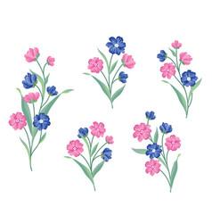 Flower set floral bouquet summer decorative vector