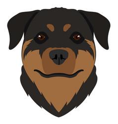 Isolated rottweiler avatar vector