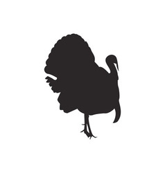 Turkey silhouette vector