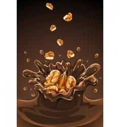 walnuts vector image vector image