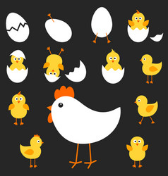 with the mother hen and her chickens vector image