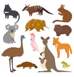 Australian wild animals cartoon collection vector