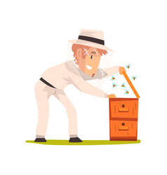 beekeeper man hiver harvesting honey apiculture vector image