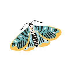 Gorgeous single butterfly with colored wings and vector