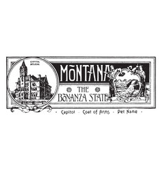The state banner of montana the bonanza state vector