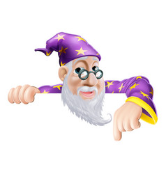 Fun wizard pointing down vector
