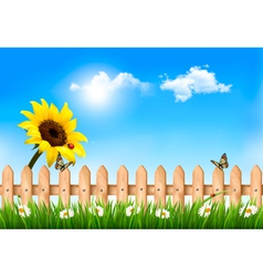Summer nature background with sunflower and wooden vector image
