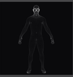 3d human body dotted wireframe vector