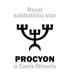 Astrology procyon the royal behenian kabbalistic vector