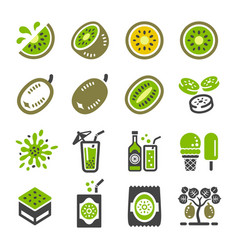 Kiwi icon set vector