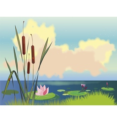 lake cane and lotuses vector image