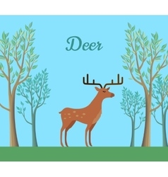 Red deer in forest ruminant mammal vector