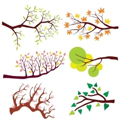 Tree branch with leaves and flowers set vector image