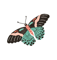Tropical butterfly with colorful wings and vector