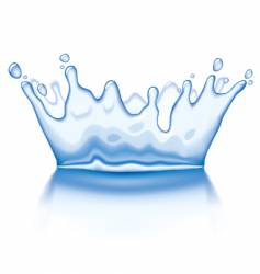 water crown vector image vector image