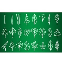 Collection of Leaf Silhouettes on School Board vector image