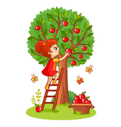 Girl on the stairs collects apples vector