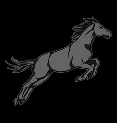 Jumping black horse hand drawn vector