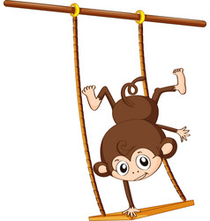 Monkey and swing vector