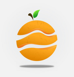 orange fruit slice circle concept isolated vector image