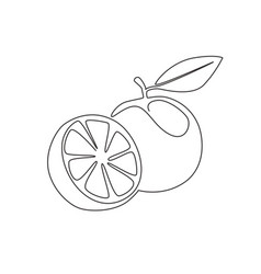 single one line drawing sliced healthy organic vector image