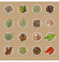 Spice or seasoning on plates like seeds and roots vector