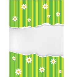 Spring backgroud ripped paper vector image