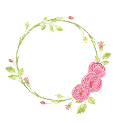 watercolor pink english rose wreath frame vector image