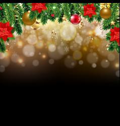 xmas card with christmas poinsettia and fir tree vector image