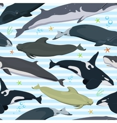 seamless pattern with whales modern texture vector image
