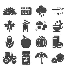 autumn icon set set pumpkin chestnut vector image