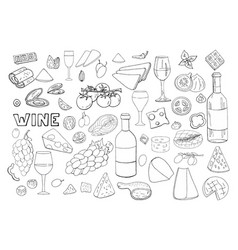 bid hand drawn set with wine different cheese vector image