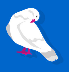 bird sitting and cleaning vector image