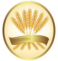ears of wheat and ribbons vector image