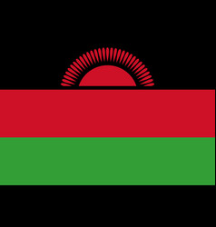 Flag in colors of malawi image vector