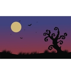 Halloween bat and dry tree scenery vector image