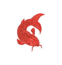 Red Koi Nishikigoi Carp Fish Drawing vector image