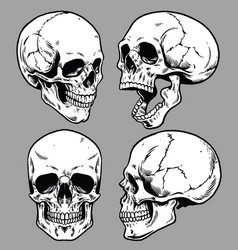 set of skull in hand drawing style vector image vector image