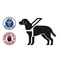 guide-dog symbol with two round service dog badges vector image