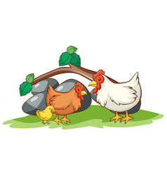 isolated picture chickens in garden vector image