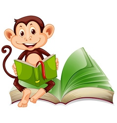 Little monkey sitting and reading a book vector