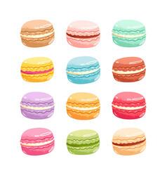 macarons set vector image