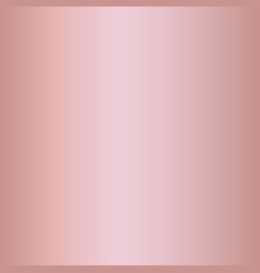pink rose gradients vector image