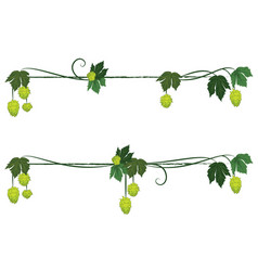Set of hop dividers vector