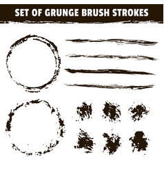 artistic brushes and round black ink strokes vector image