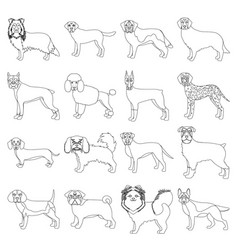 Dog pooch breed and other web icon in outline vector