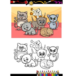 kittens group cartoon coloring book vector image
