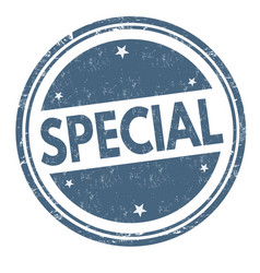 special sign or stamp vector image